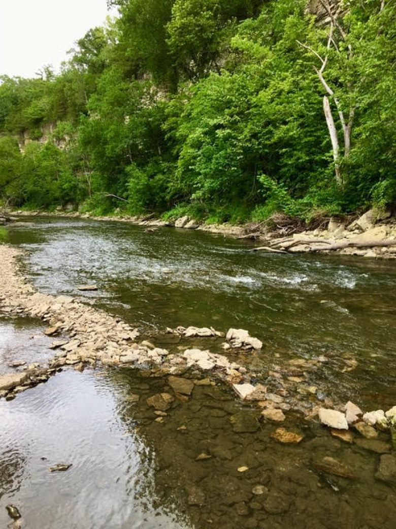 Dave Morris - A First Tenkara Season - North Branch of Root River