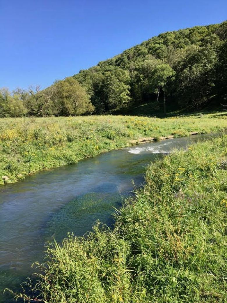 Dave Morris - A First Tenkara Season - Driftless Minnesota Trout Stream