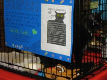 Jasper's special sign made by Amy's daughter - It will hang on his cage until he finds his furever home!! ADOPTED 9/8/2013