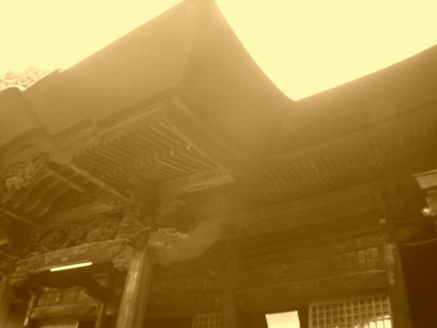 神代植物園&深大寺 (39)