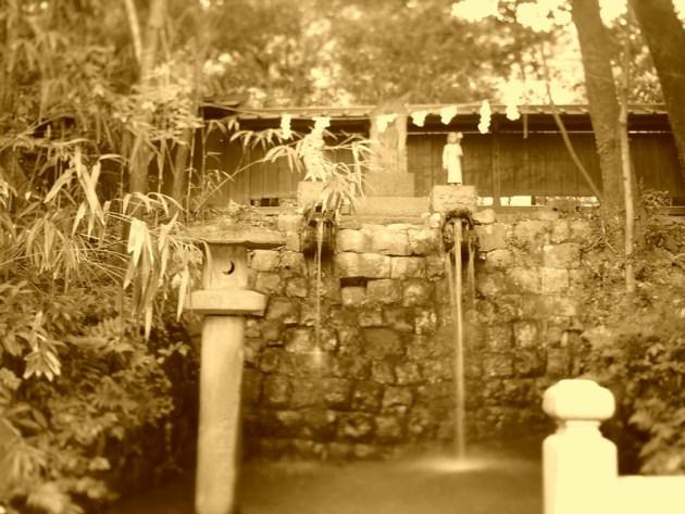 神代植物園&深大寺 (25)