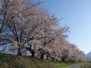 黒沢川(1)