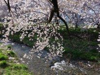 黒沢川 (5)