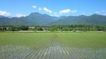 安曇野風景写真 twitter@tenmasawa (130)