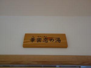 カミツレ研究所・八寿恵荘 (28)