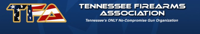 Image result for tennessee firearms