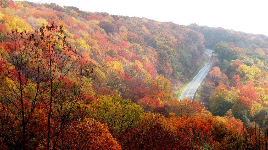 highway winding through wooded hillside in the fall