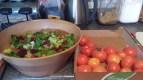 Salad_'n_Tomatoes[1]