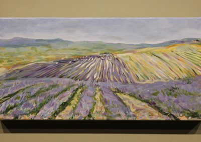Lavender Fields by Lisa Sims Wallace