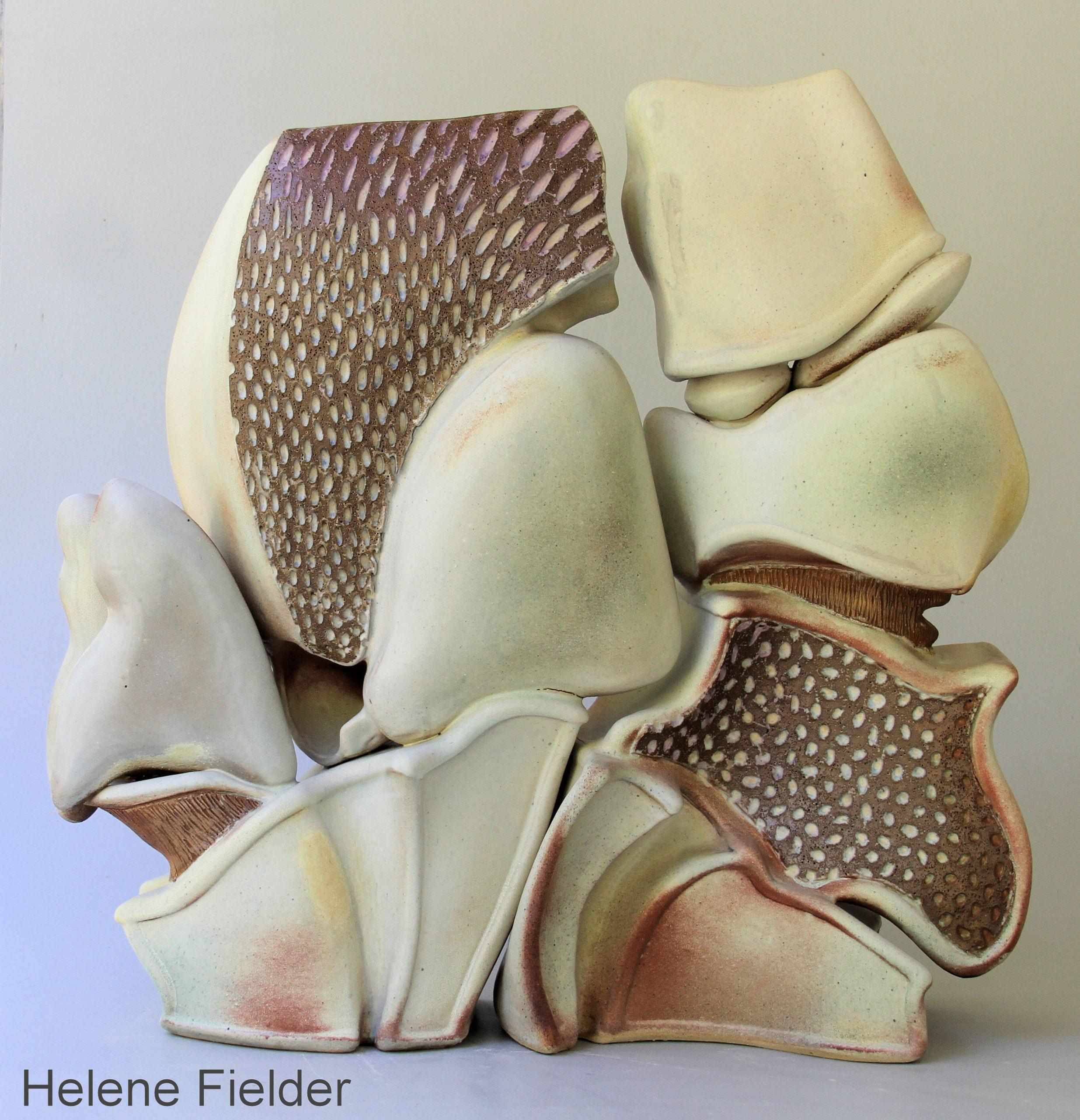 Coconut Crab by Helene Fielder