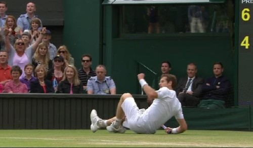 Andy Murray Wimbledon fall grass pictures