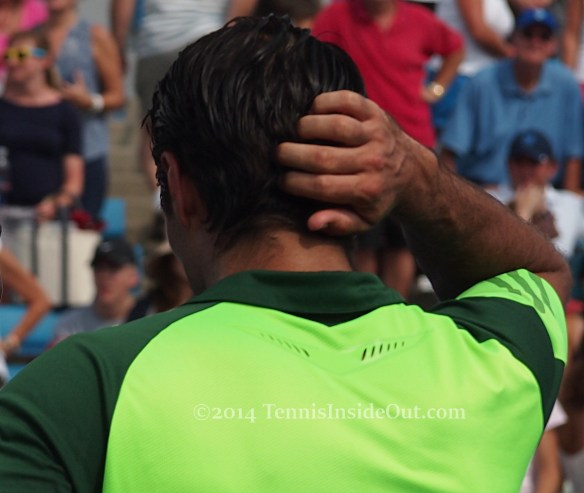 Fernando Verdasco running fingers through gorgeous thick dark hair photos pics images