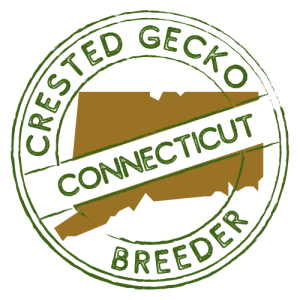 Crested Gecko Breeders in Connecticut