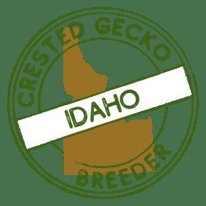 Crested Gecko Breeders in Idaho