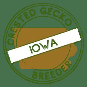 Crested Gecko Breeders in Iowa