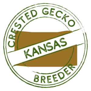 Crested Gecko Breeders in Kansas