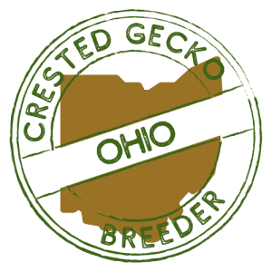 Crested Gecko Breeders in Ohio