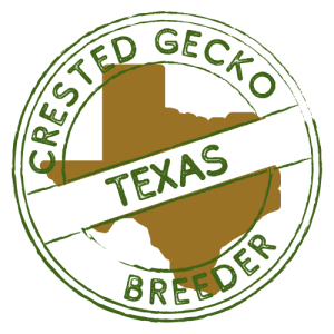 Crested Gecko Breeders in Texas