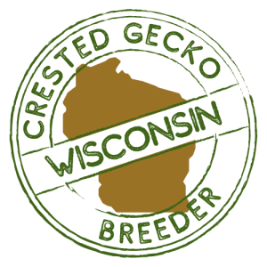 Crested Gecko Breeders in Wisconson