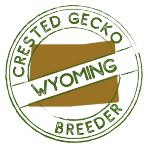 Crested Gecko Breeders in Wyoming