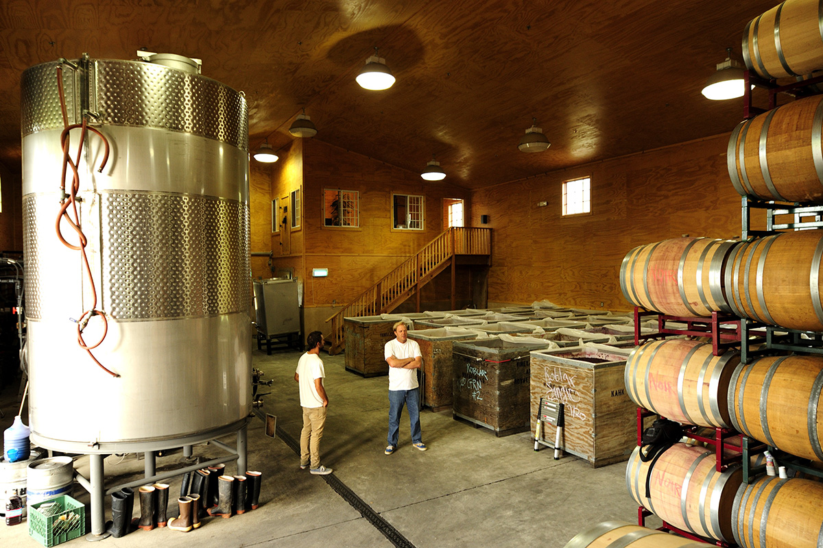 Inside the Tensley Vineyard