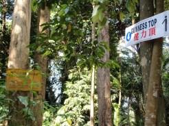 Bukit Sg Puteh reconnaissance