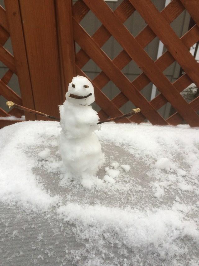 World's tiniest snowman