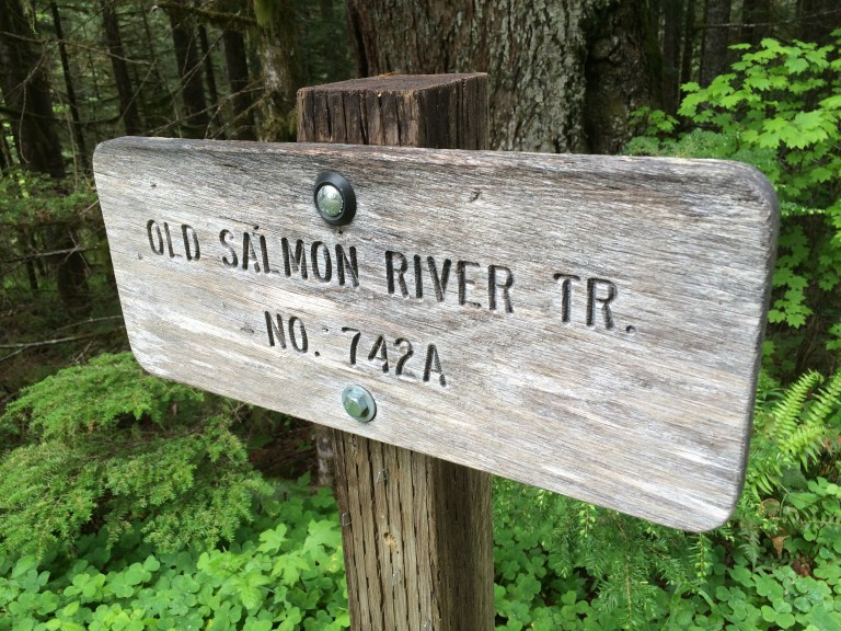 The Old Salmon River Trail is a family friendly hike on Mt. Hood near Portland. Ten Thousand Hour Mama