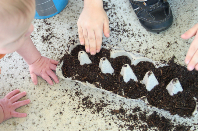 10 fun egg carton crafts // seed starters // Ten Thousand Hour Mama