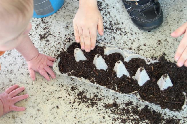 10 fun egg carton crafts // seed starters // Ten Thousand Hour Mama