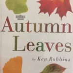 Children's books about fall and autumn leaves - Ten Thousand Hour Mama