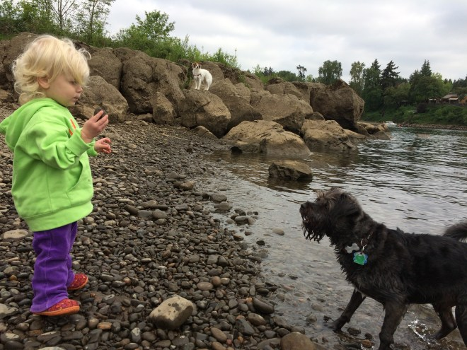 toddler hike Willamette river dogs throwing rocks Oregon