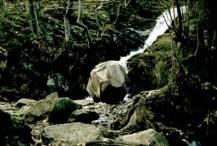 david-nash-boulder2