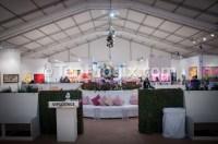 Art Fair Tents & Art Fair Tent Ideas 2