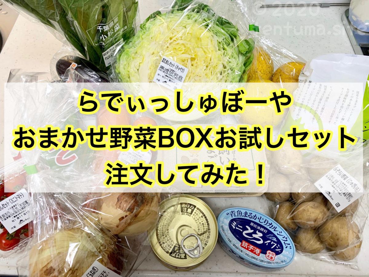 【体験談】らでぃっしゅぼーやのおまかせ野菜ボックスお試しセットを注文してみた!
