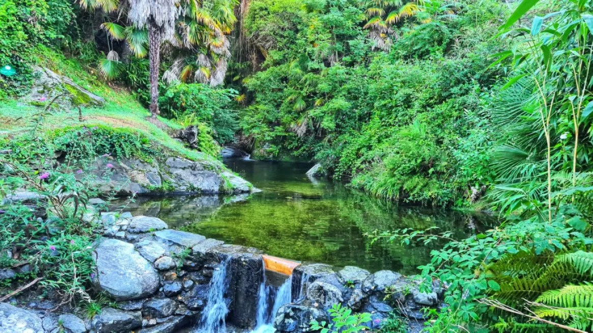 Tenuta Casa Cima, Guesthouse, Nature Pool