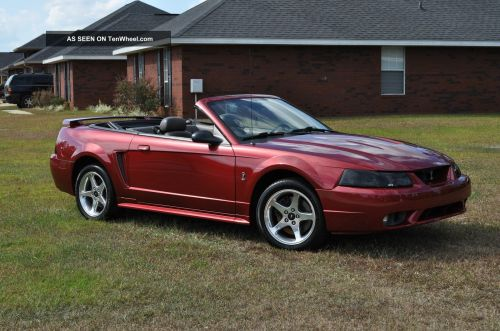 small resolution of 2001 ford mustang svt cobra convertible mustang photo 1