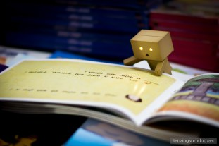 danbo reading