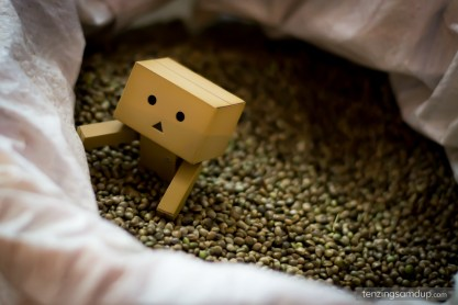 danbo grains