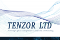 Tenzor Ltd. corporate restructuring, working capital management, operational due diligence