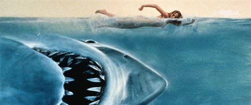 lo-squalo-copertina