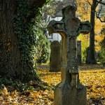 CRONISTAS ÓMICRON: Vida después de la muerte