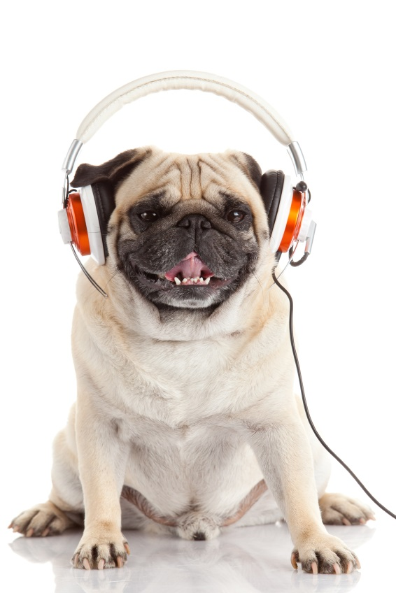 Cute Earphones Wallpaper Webinars Amp Radio Teoti Anderson