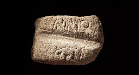 Decorated shaft straigthener from Göbekli Tepe (Photo N. Becker, Copyright DAI).
