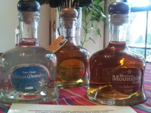 The full line-up of Roger Clyne's Mexican Moonshine.