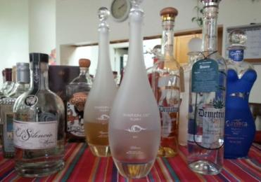 tequila tasting, tasting, sipping off the cuff