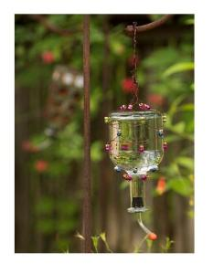 hummingbird feeder, Tequila Distillery