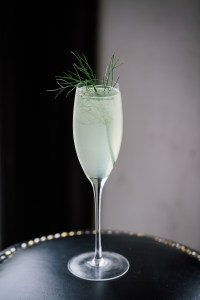 Tequila Don Julio - Fennel 75 - Matt Grippo