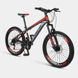 Xiaomi Youpin Forever P10 Bicicleta Montana 300x300 - Xiaomi_Youpin_Forever_P10_Bicicleta_Montana
