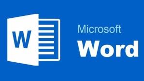 Cara Menonaktifkan Kamus Office Word 2016
